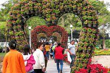 Выставка зимних цветов в провинции Кхонкэн