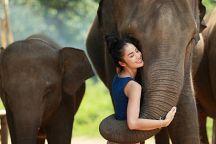 Планы по развитию тайского туризма в 2018 году