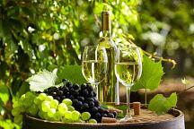 Фестиваль вина прошел в Накхонратчасиме