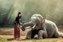 Таиланд получил шесть наград от PATA