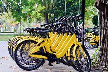 Велопрокат Ofo «уходит» из Таиланда