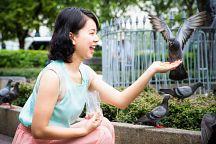 Мэрия Бангкока запретила кормить голубей