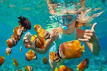 Туристам в Таиланде объяснили, как сохранить экосистему коралловых рифов