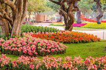 Чианграй приглашает на Фестиваль цветов