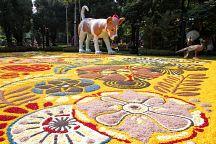 В Бангкоке состоится фестиваль цветов и садового искусства