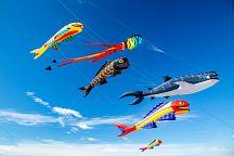 В Сатуне пройдет фестиваль воздушных змеев