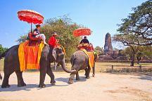 В Таиланде снова выросли доходы от туризма