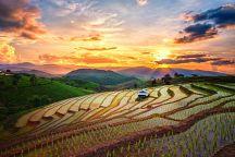 Китай готов помочь Таиланду в борьбе с засухой