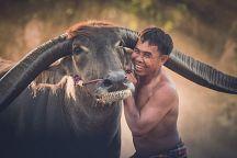 Таиланд официально признан Страной улыбок