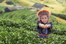 «84 достопримечательности Таиланда»: новый проект для путешественников