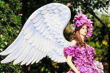 В Чианграе пройдет Международный фестиваль цветов