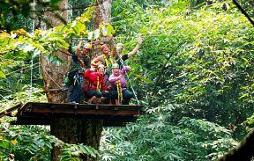 Канатная дорога в джунглях